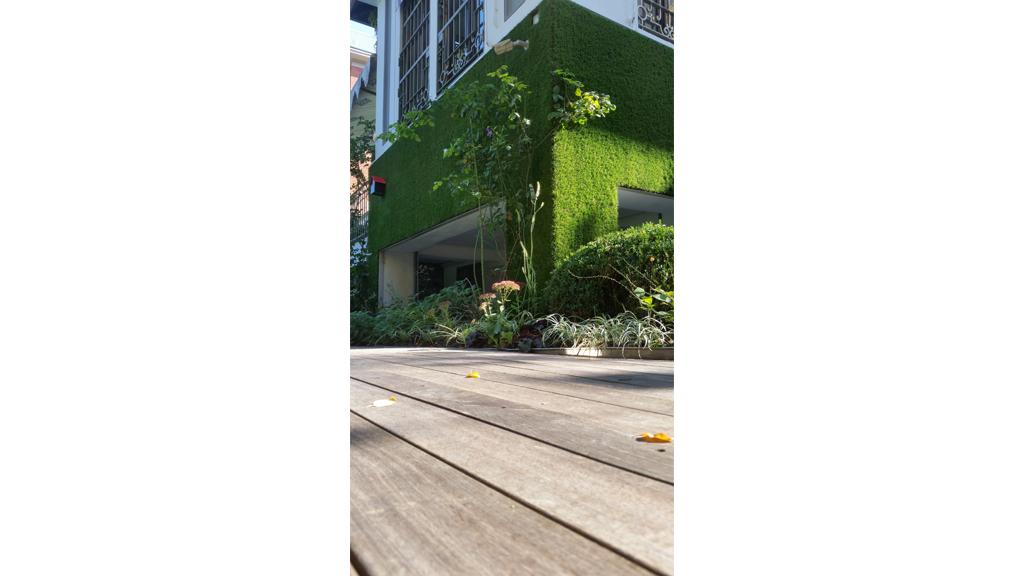 Verde verticale il giardino segreto roofingreen - Il giardino italiano ...
